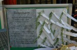Rosemary: an aid to memory